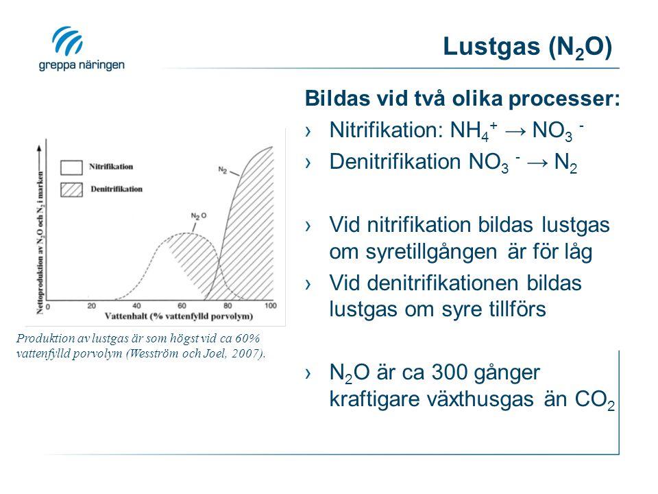 Lustgas (N 2 O) Bildas vid två olika processer: ›Nitrifikation: NH 4 + → NO 3 - ›Denitrifikation NO 3 - → N 2 ›Vid nitrifikation bildas lustgas om syretillgången är för låg ›Vid denitrifikationen bildas lustgas om syre tillförs ›N 2 O är ca 300 gånger kraftigare växthusgas än CO 2 Produktion av lustgas är som högst vid ca 60% vattenfylld porvolym (Wesström och Joel, 2007).