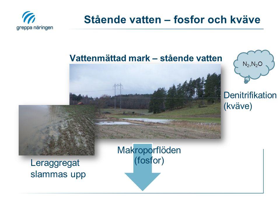 Makroporflöden (fosfor) Stående vatten – fosfor och kväve Denitrifikation (kväve) N 2,N 2 O Leraggregat slammas upp Vattenmättad mark – stående vatten