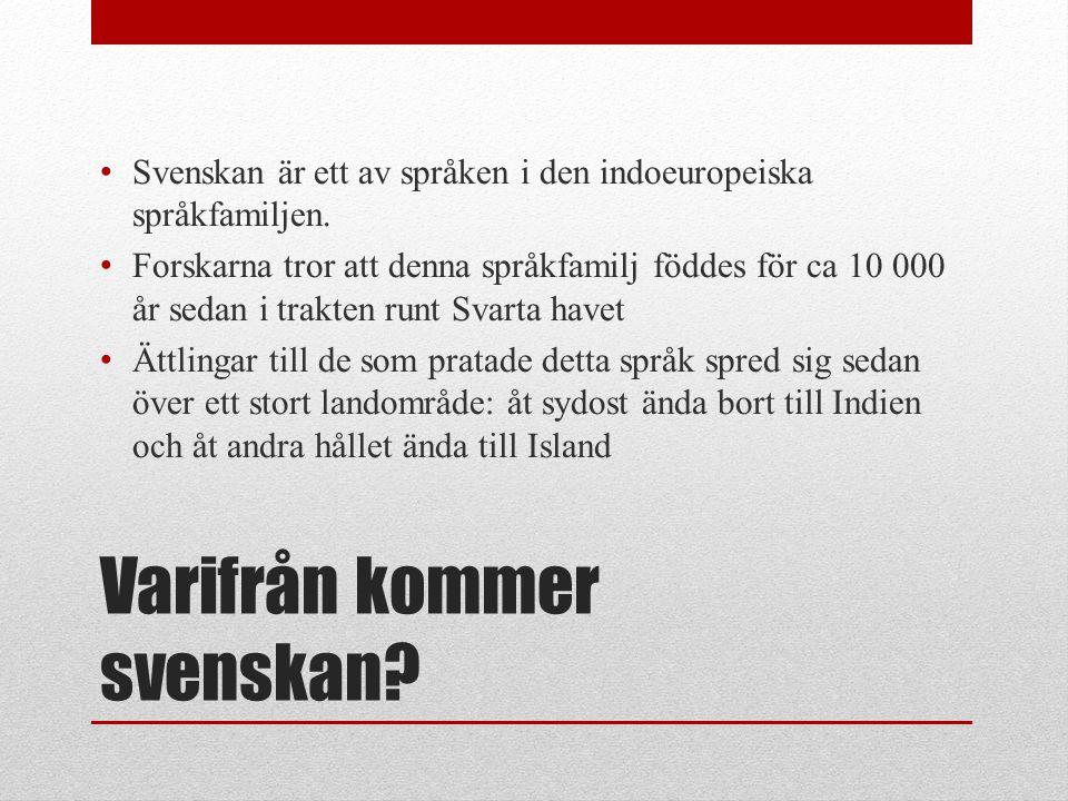 • Svenskan är ett av språken i den indoeuropeiska språkfamiljen. • Forskarna tror att denna språkfamilj föddes för ca 10 000 år sedan i trakten runt S