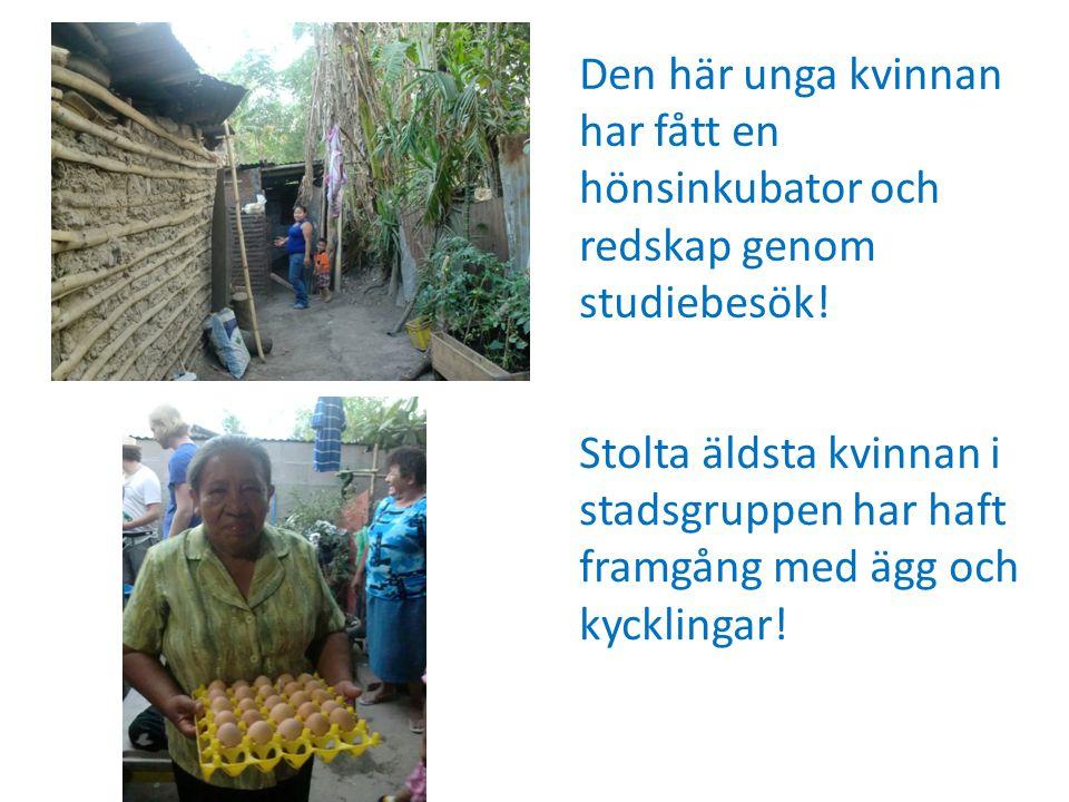 Stolta äldsta kvinnan i stadsgruppen har haft framgång med ägg och kycklingar.