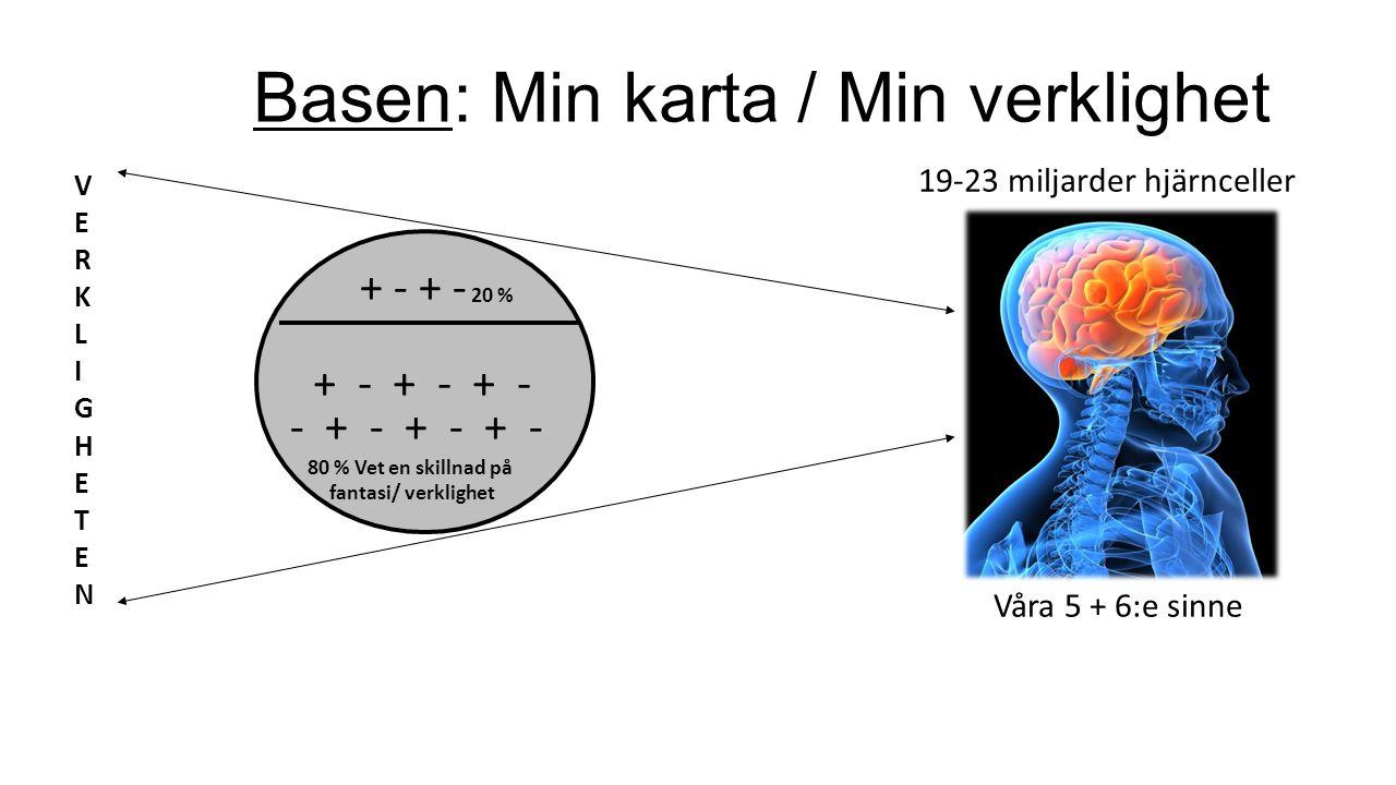 Basen: Min karta / Min verklighet VERKLIGHETENVERKLIGHETEN + - + - + - - + - + - + - 80 % Vet en skillnad på fantasi/ verklighet + - + - 20 % Vi registrerar verkligheten genom våra sinnen… Vi betraktar verkligheten genom våra minnen… Många ger upp 10 meter före toppen.