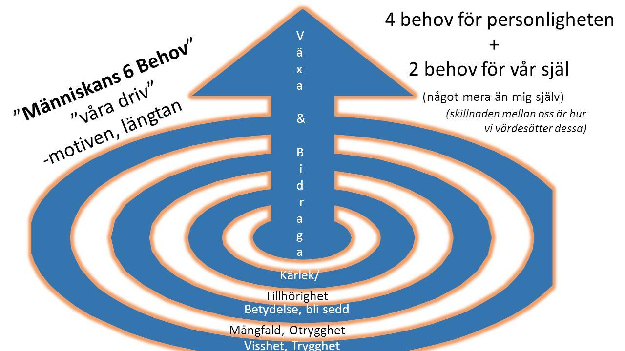 Visshet, Trygghet Betydelse, bli sedd Kärlek/ V ä x a & B i d r a g a Mångfald, Otrygghet Tillhörighet Människans 6 Behov våra driv -motiven, längtan 4 behov för personligheten + 2 behov för vår själ (något mera än mig själv) (skillnaden mellan oss är hur vi värdesätter dessa)