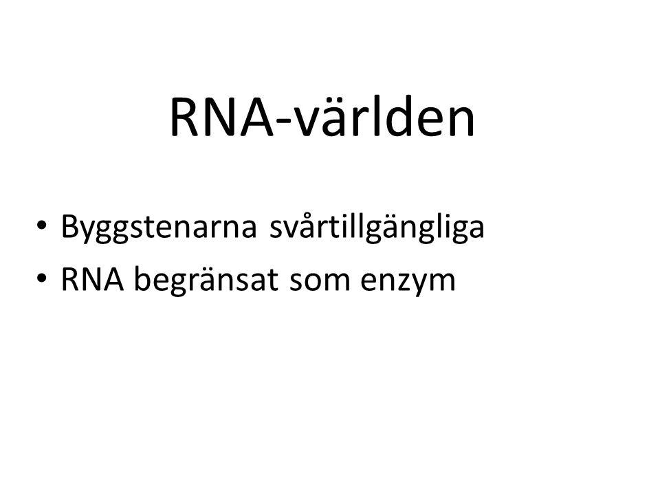 RNA-världen • Byggstenarna svårtillgängliga • RNA begränsat som enzym