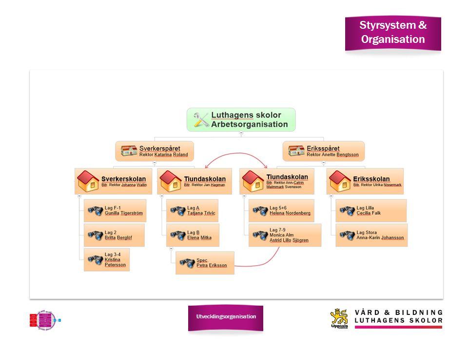 Styrsystem & Organisation Utvecklingsorganisation
