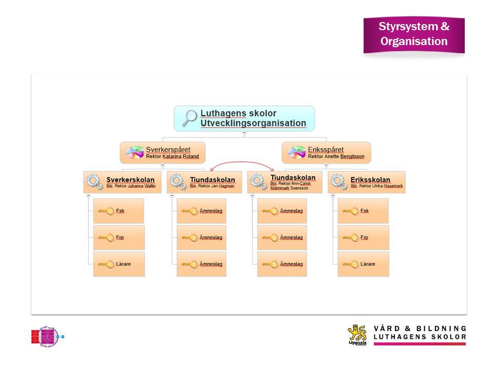 Styrsystem & Organisation
