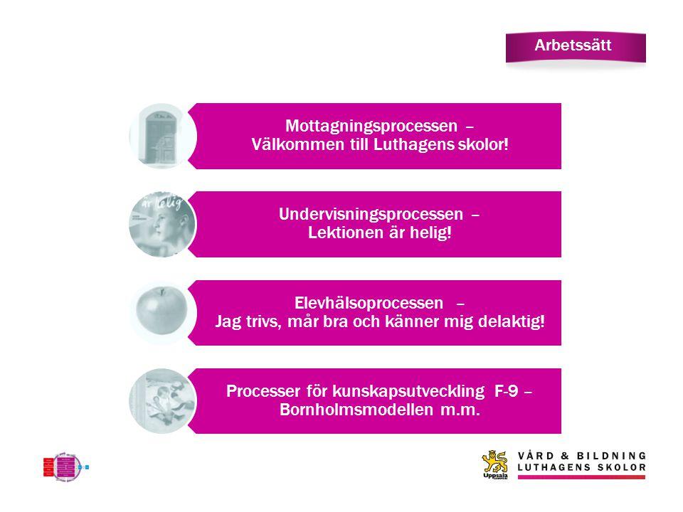 Arbetssätt Mottagningsprocessen – Välkommen till Luthagens skolor! Undervisningsprocessen – Lektionen är helig! Elevhälsoprocessen – Jag trivs, mår br
