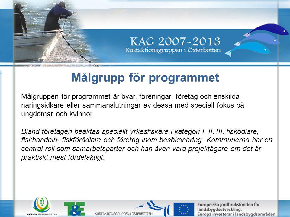 Målgrupp för programmet Målgruppen för programmet är byar, föreningar, företag och enskilda näringsidkare eller sammanslutningar av dessa med speciell fokus på ungdomar och kvinnor.