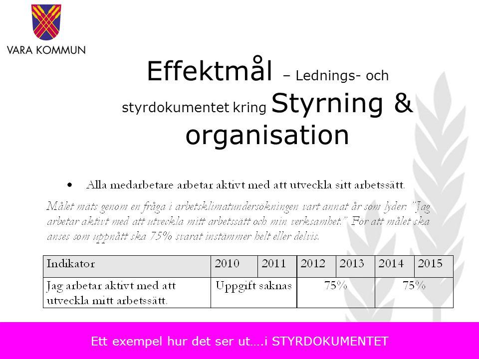 Effektmål – Lednings- och styrdokumentet kring Styrning & organisation Ett exempel hur det ser ut….i STYRDOKUMENTET