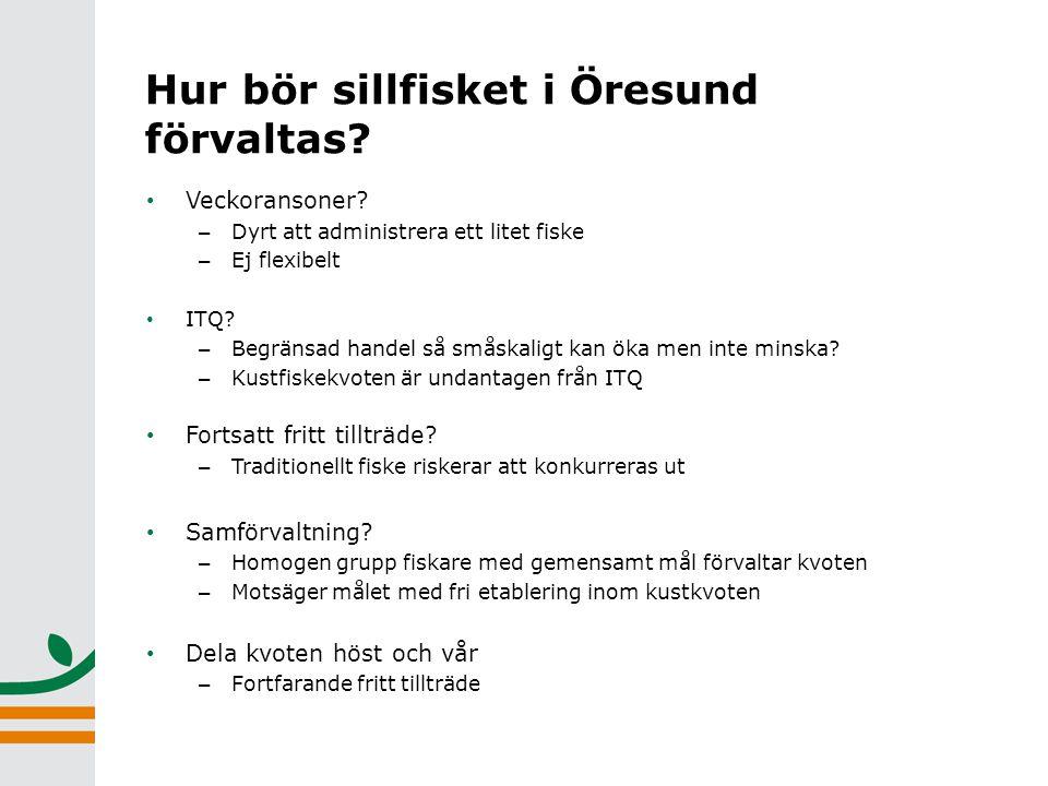 Hur bör sillfisket i Öresund förvaltas. • Veckoransoner.