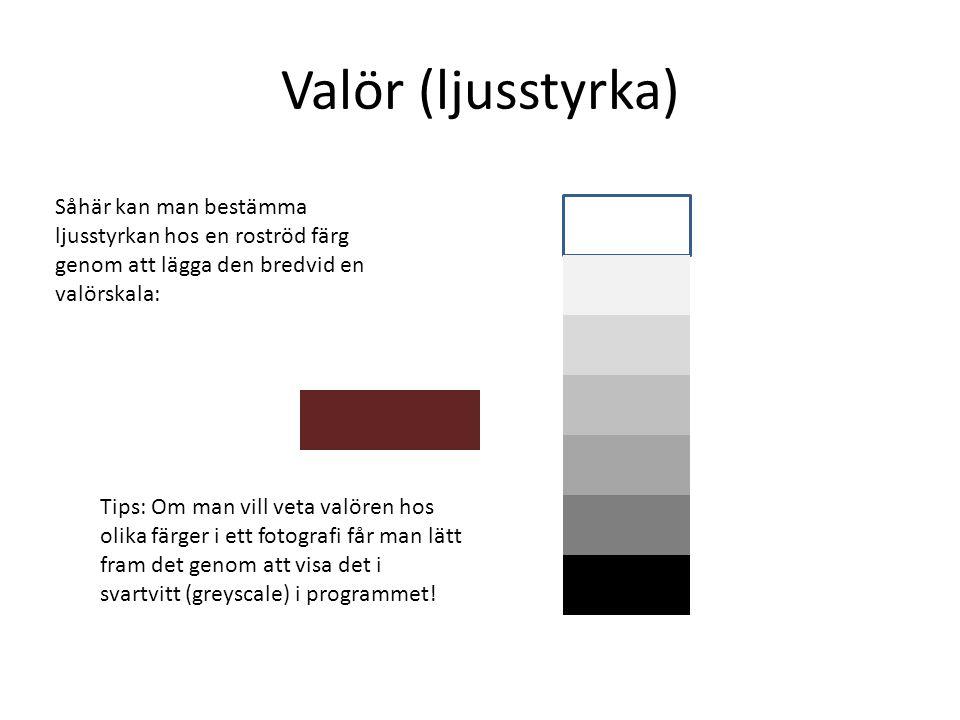 Valör (ljusstyrka) Såhär kan man bestämma ljusstyrkan hos en roströd färg genom att lägga den bredvid en valörskala: Tips: Om man vill veta valören hos olika färger i ett fotografi får man lätt fram det genom att visa det i svartvitt (greyscale) i programmet!