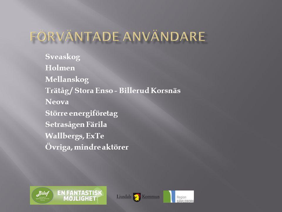Sveaskog Holmen Mellanskog Trätåg / Stora Enso - Billerud Korsnäs Neova Större energiföretag Setrasågen Färila Wallbergs, ExTe Övriga, mindre aktörer