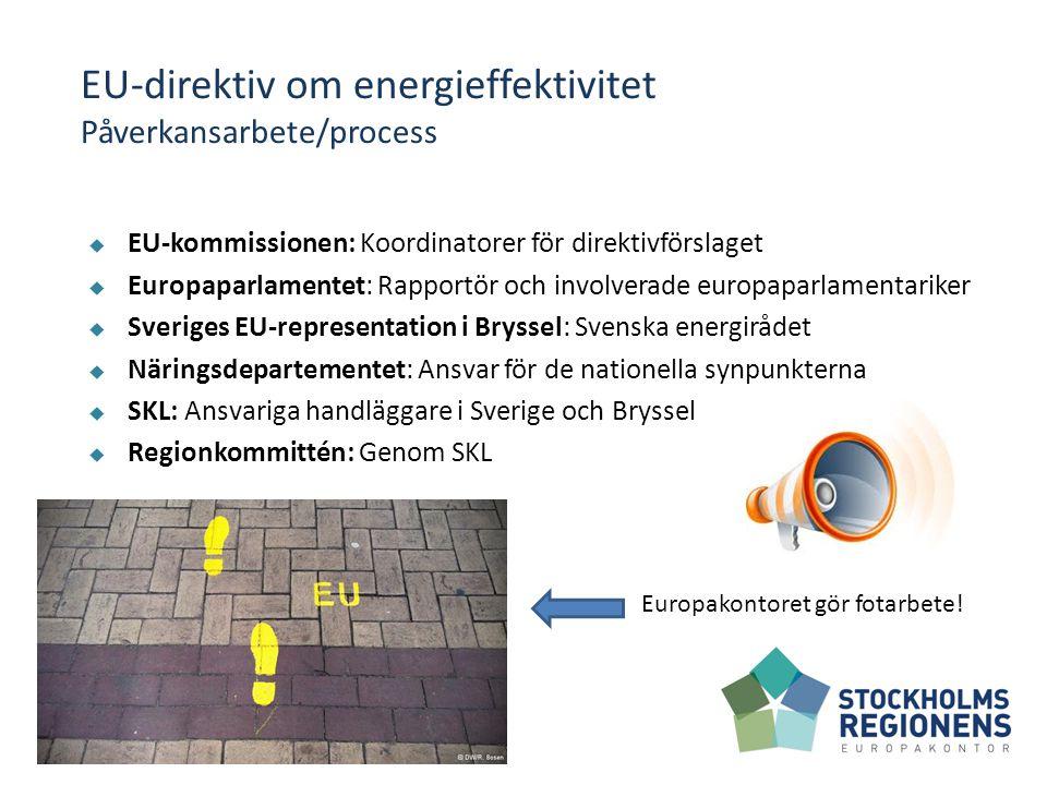 Förhandlingar  Våren 2012 hårda förhandlingar mellan Rådet och Europaparlamentet  Europaparlamentet för bindande åtgärder – Rådet för mer flexibilitet och att undanta lokala och regionala regeringar  Danska EU-ordförandeskapet driver på  Slutligen kompromissbeslut i juni 2012.