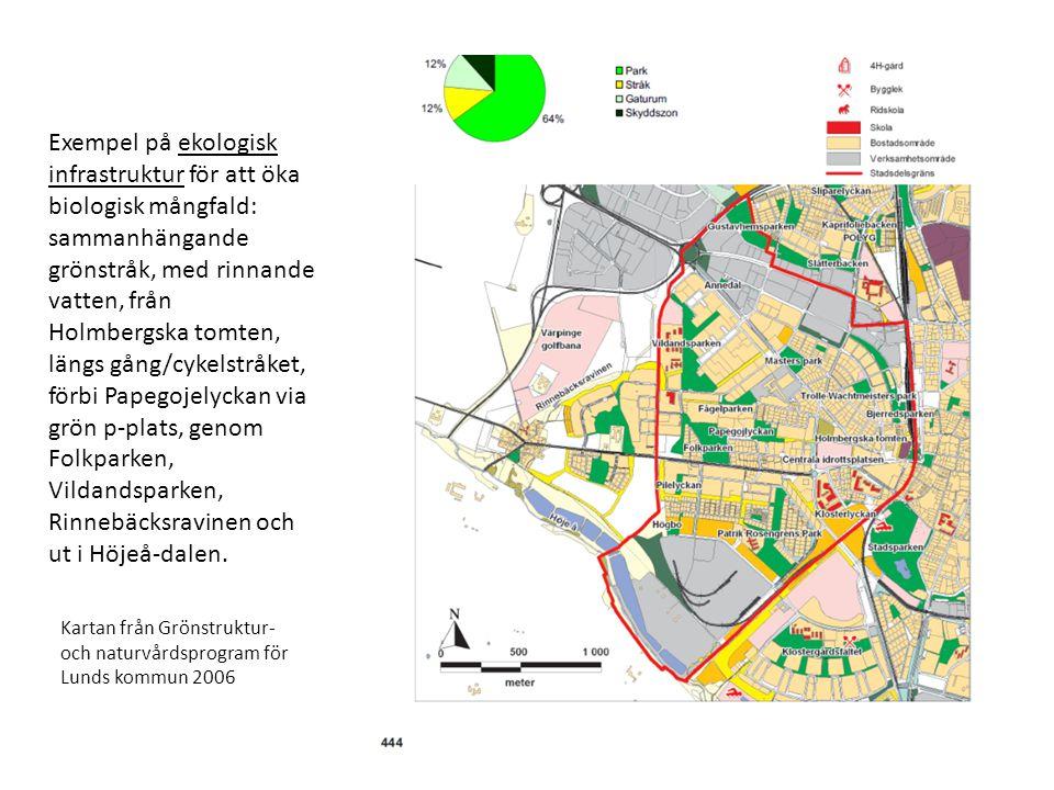 Exempel på ekologisk infrastruktur för att öka biologisk mångfald: sammanhängande grönstråk, med rinnande vatten, från Holmbergska tomten, längs gång/cykelstråket, förbi Papegojelyckan via grön p-plats, genom Folkparken, Vildandsparken, Rinnebäcksravinen och ut i Höjeå-dalen.