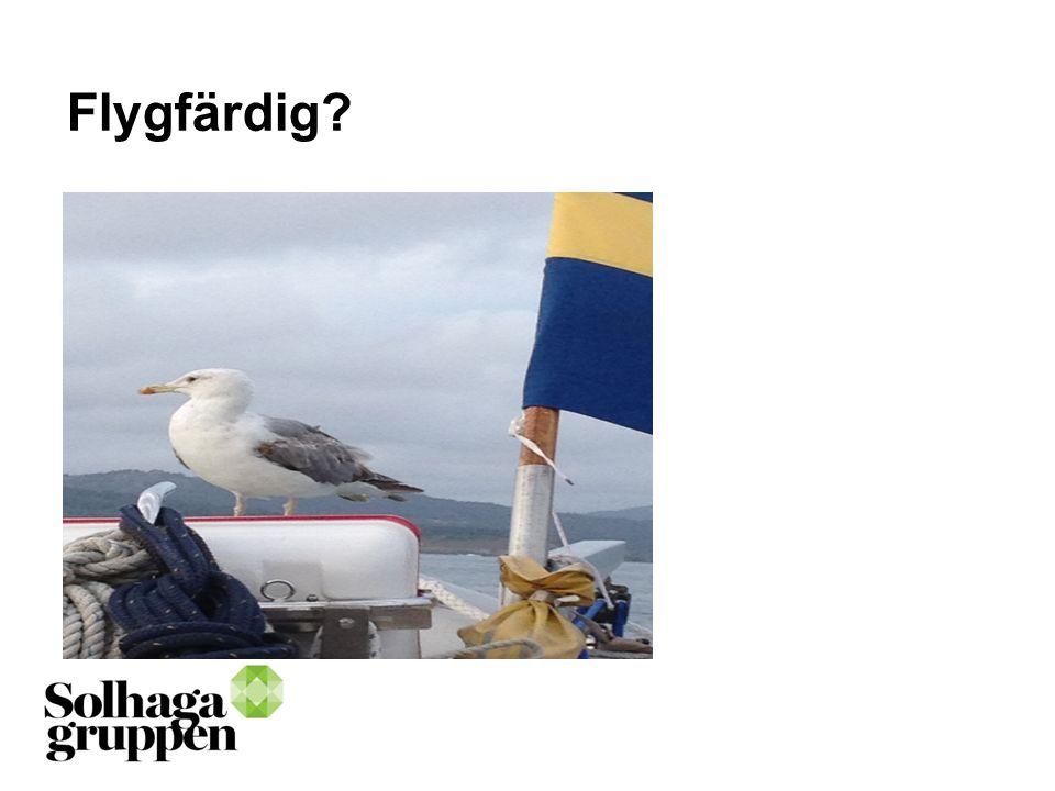 Flygfärdig?