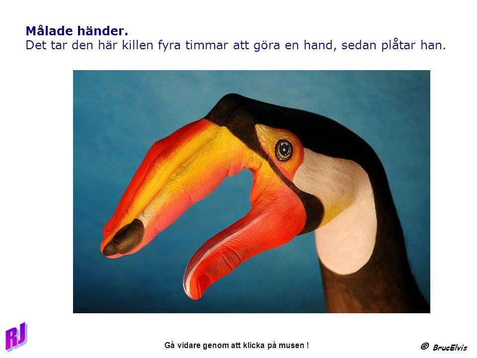 ® BrucElvis Gå vidare genom att klicka på musen .Målade händer.