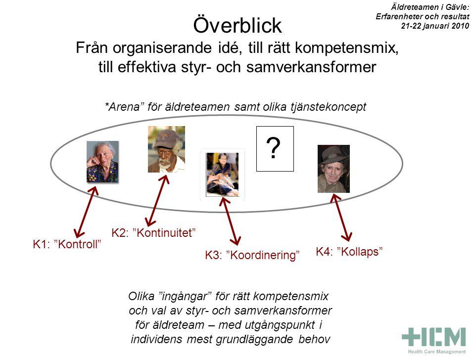 Överblick Från organiserande idé, till rätt kompetensmix, till effektiva styr- och samverkansformer .