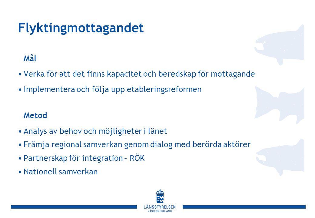 Flyktingmottagandet Mål •Verka för att det finns kapacitet och beredskap för mottagande •Implementera och följa upp etableringsreformen Metod •Analys av behov och möjligheter i länet •Främja regional samverkan genom dialog med berörda aktörer •Partnerskap för integration – RÖK •Nationell samverkan