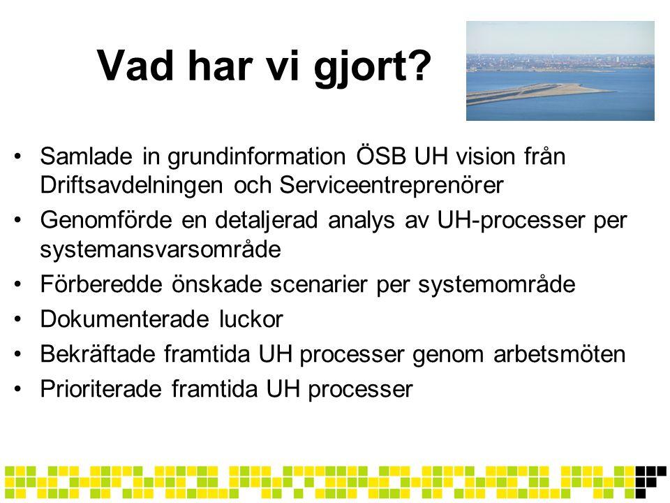 •Samlade in grundinformation ÖSB UH vision från Driftsavdelningen och Serviceentreprenörer •Genomförde en detaljerad analys av UH-processer per system