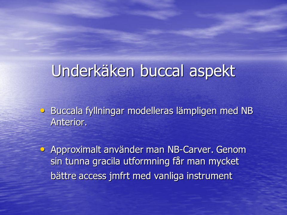 Underkäken buccal aspekt • Buccala fyllningar modelleras lämpligen med NB Anterior.