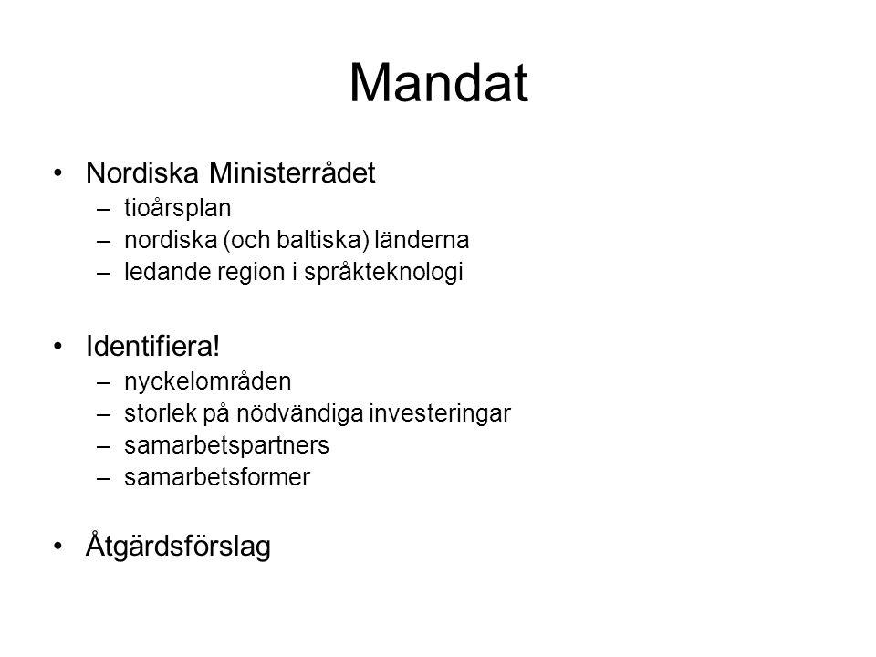 Mandat •Nordiska Ministerrådet –tioårsplan –nordiska (och baltiska) länderna –ledande region i språkteknologi •Identifiera! –nyckelområden –storlek på