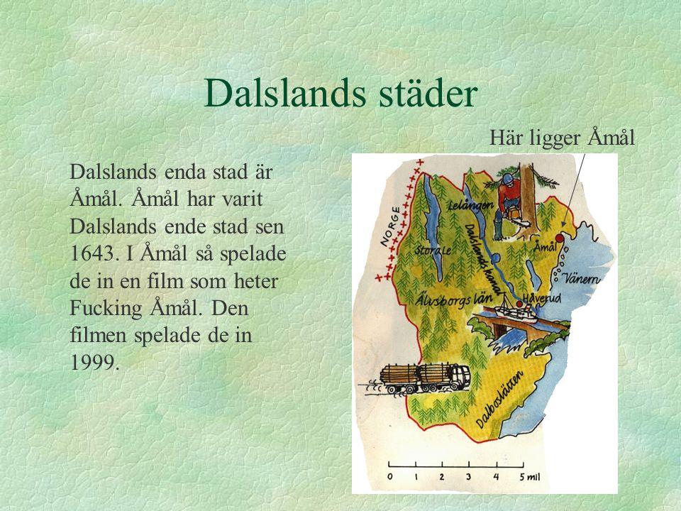 Dalslands städer Dalslands enda stad är Åmål. Åmål har varit Dalslands ende stad sen 1643. I Åmål så spelade de in en film som heter Fucking Åmål. Den