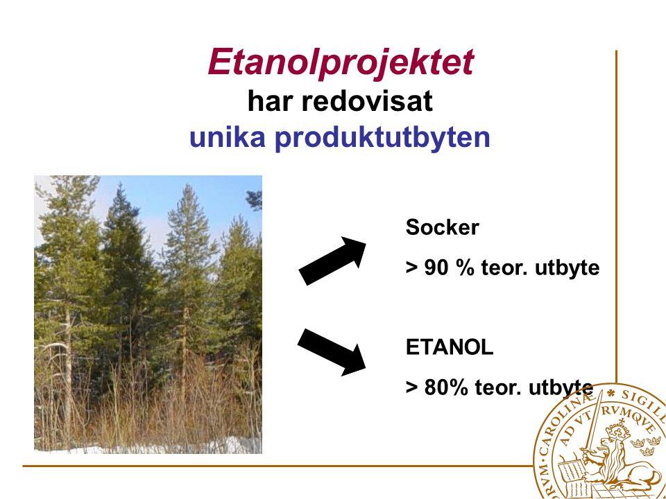 Etanolprojektet har redovisat unika produktutbyten Socker > 90 % teor.