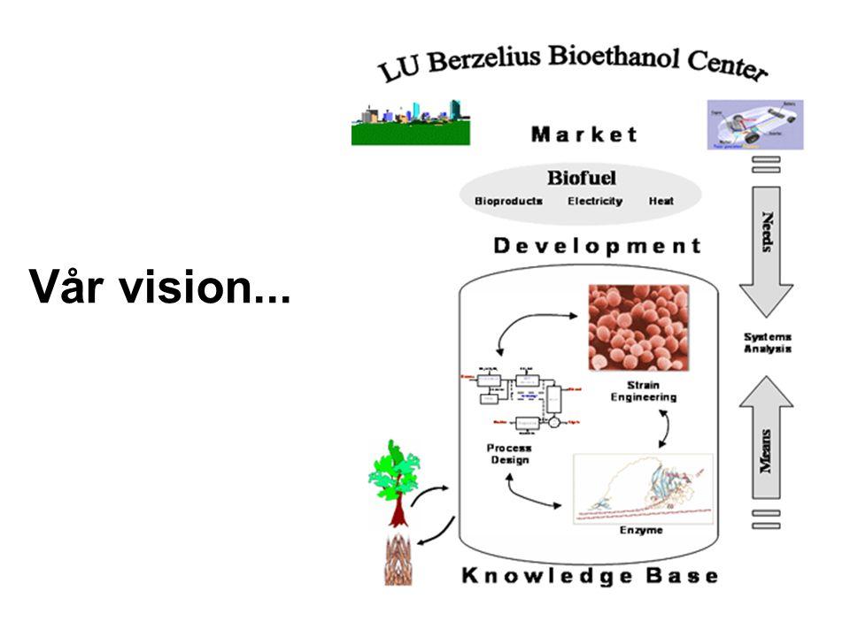 Vår vision...