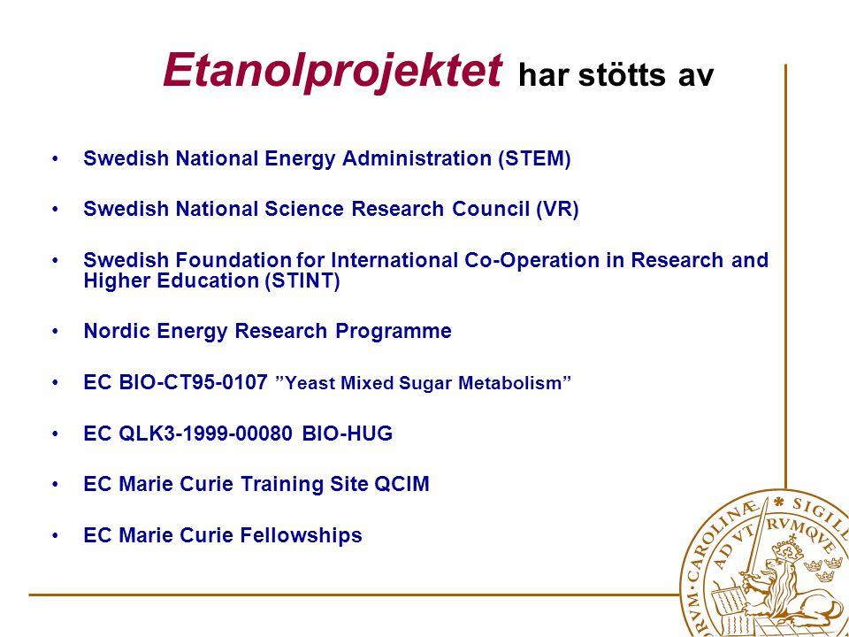Etanolprojektet har genererat R&D till.... en världsunik pilotanläggning i Örnsköldsvik
