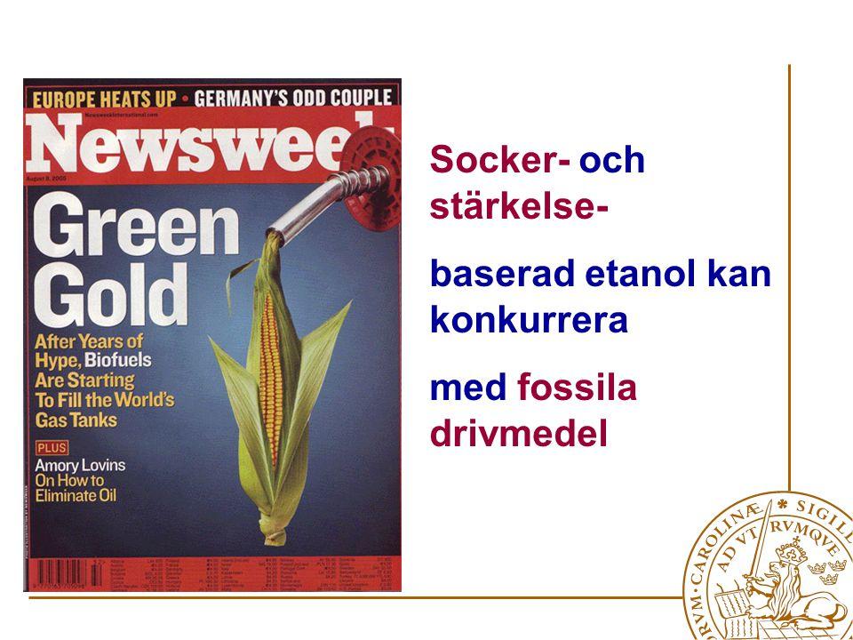 Socker- och stärkelse- baserad etanol kan konkurrera med fossila drivmedel