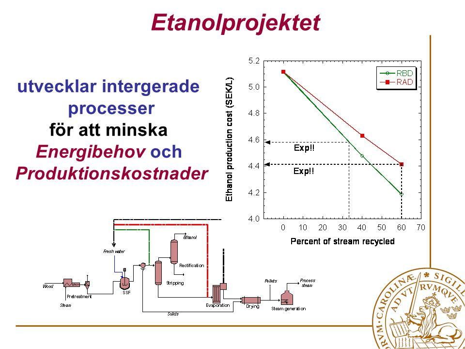utvecklar intergerade processer för att minska Energibehov och Produktionskostnader Etanolprojektet