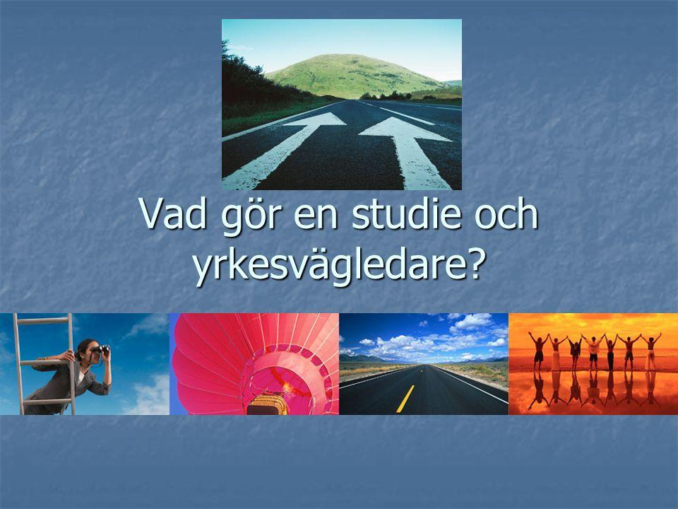 Studie och yrkesvägledare;  Har mycket kontakt med elever, lärare och föräldrar  Informerar grupper (ex.