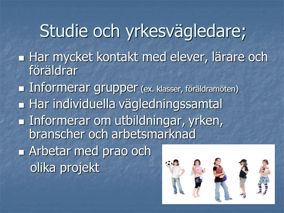 Studie och yrkesvägledare;  Har mycket kontakt med elever, lärare och föräldrar  Informerar grupper (ex. klasser, föräldramöten)  Har individuella