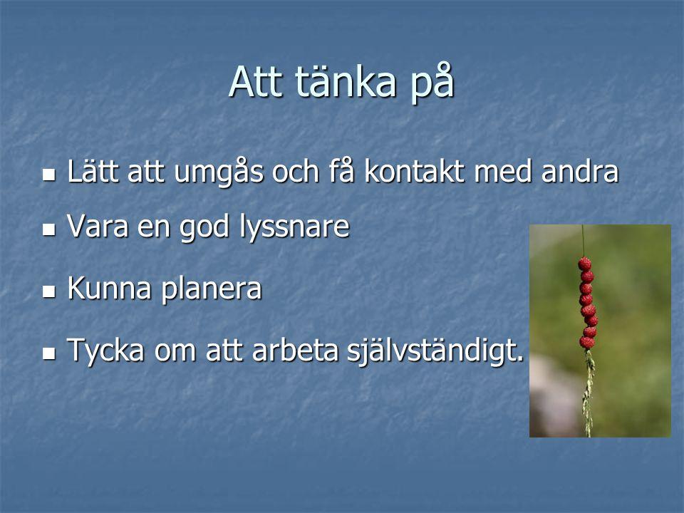 Att tänka på  Lätt att umgås och få kontakt med andra  Vara en god lyssnare  Kunna planera  Tycka om att arbeta självständigt.