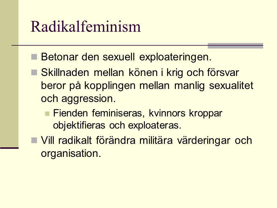 Kvinnoförsvar i vår tid. Fredsbevarande uppgifter passar kvinnliga egenskaper (?).