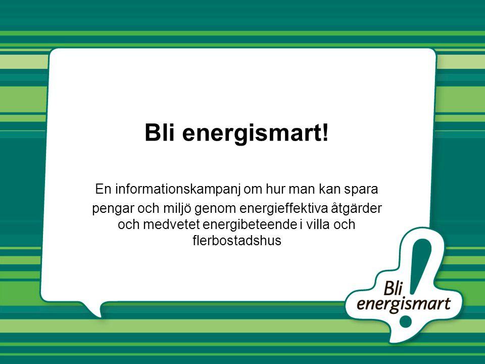 Bli energismart! En informationskampanj om hur man kan spara pengar och miljö genom energieffektiva åtgärder och medvetet energibeteende i villa och f
