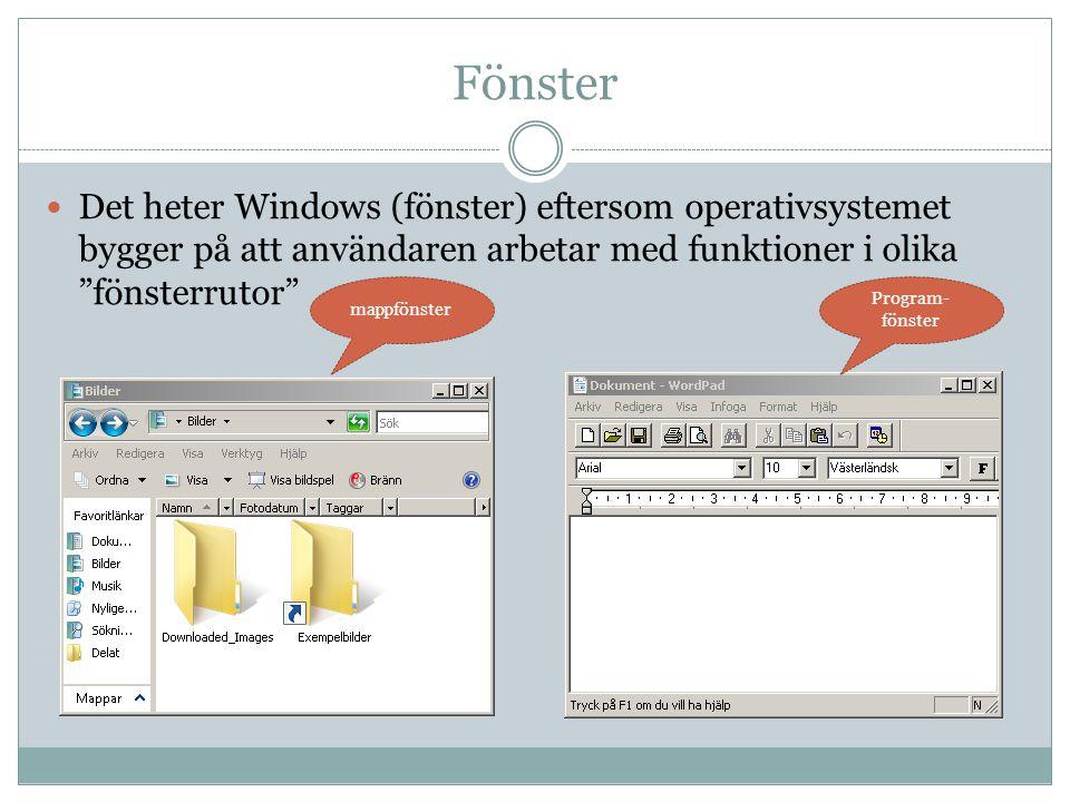 """Fönster  Det heter Windows (fönster) eftersom operativsystemet bygger på att användaren arbetar med funktioner i olika """"fönsterrutor"""" mappfönster Pro"""
