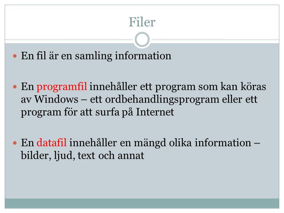 Filer  En fil är en samling information  En programfil innehåller ett program som kan köras av Windows – ett ordbehandlingsprogram eller ett program