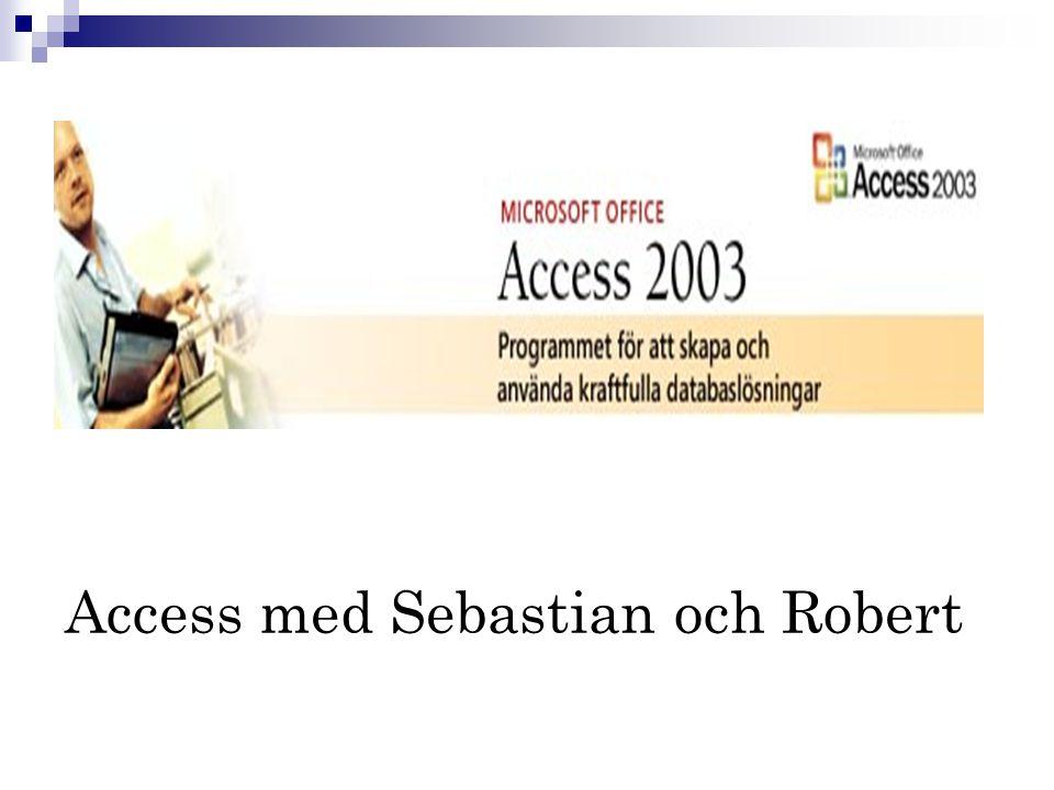 Access med Sebastian och Robert