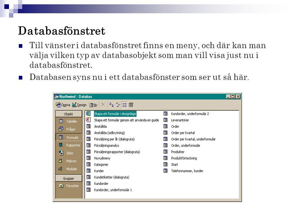 Databasfönstret  Till vänster i databasfönstret finns en meny, och där kan man välja vilken typ av databasobjekt som man vill visa just nu i databasf
