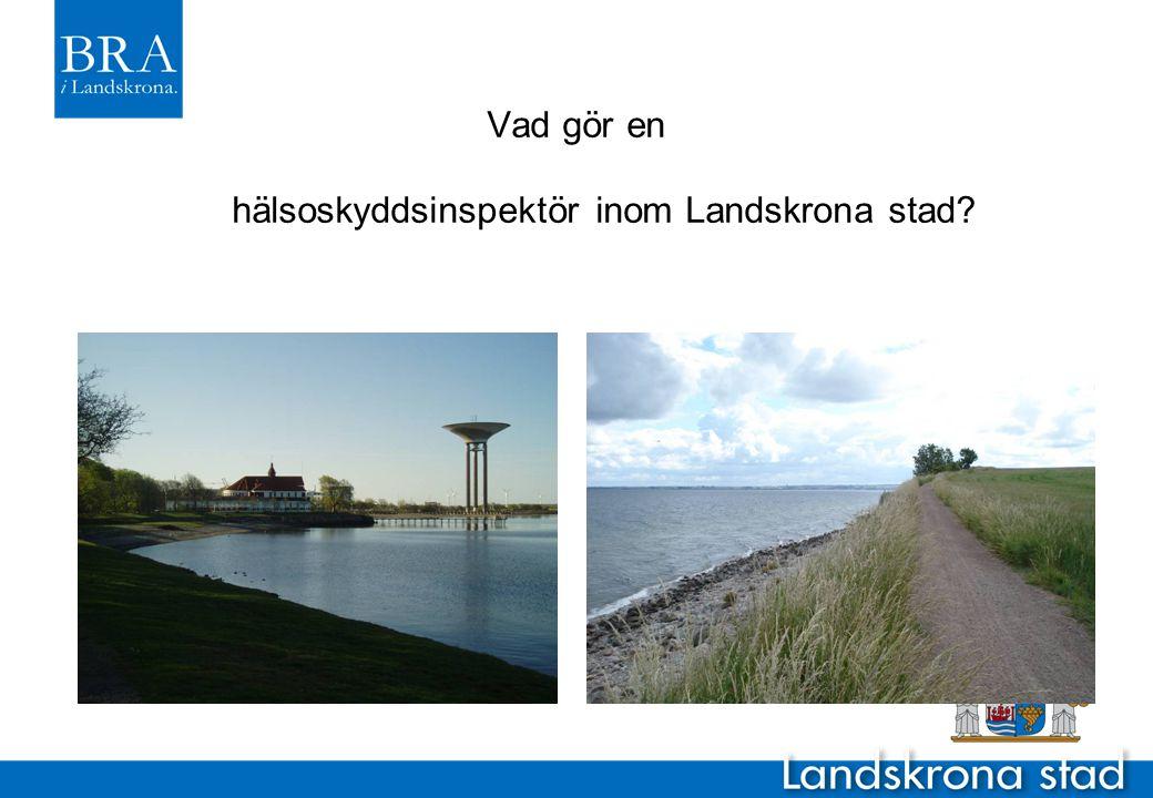 Vad gör en hälsoskyddsinspektör inom Landskrona stad?