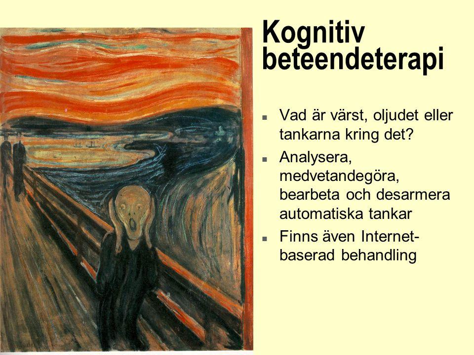 Kognitiv beteendeterapi n Vad är värst, oljudet eller tankarna kring det? n Analysera, medvetandegöra, bearbeta och desarmera automatiska tankar n Fin