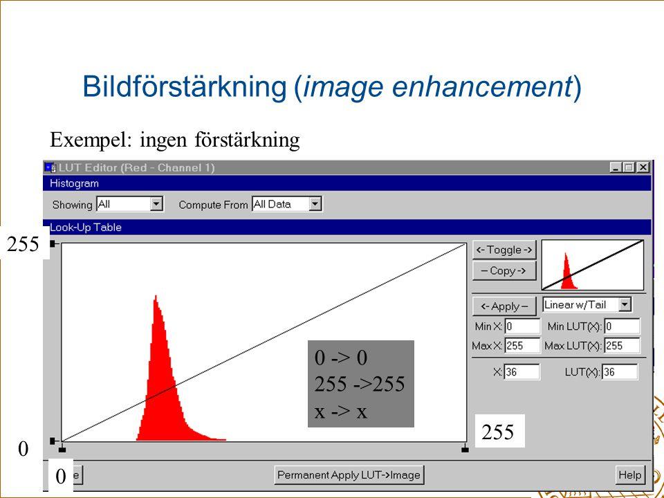 Bildförstärkning (image enhancement) Exempel: ingen förstärkning 0 255 0 0 -> 0 255 ->255 x -> x