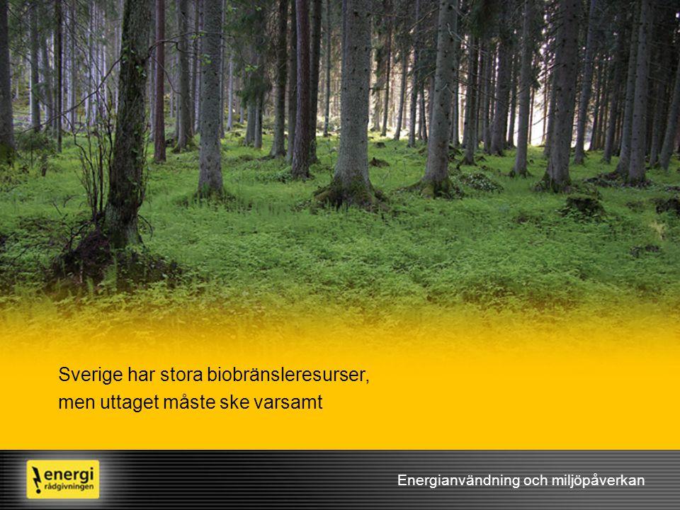 Energianvändning och miljöpåverkan Sverige har stora biobränsleresurser, men uttaget måste ske varsamt
