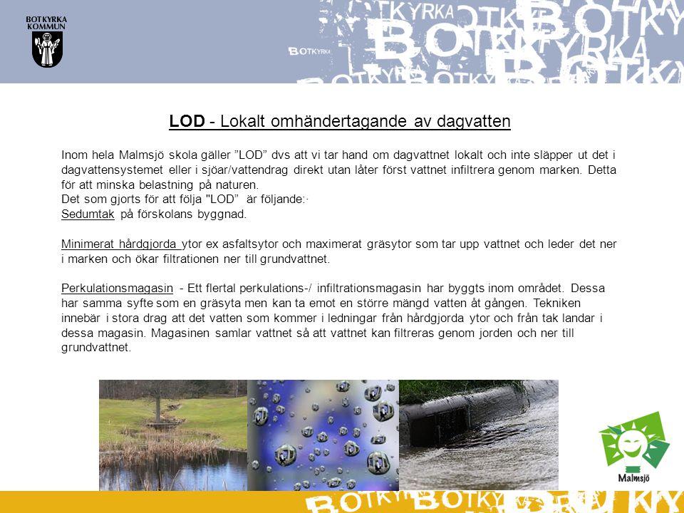 """LOD - Lokalt omhändertagande av dagvatten Inom hela Malmsjö skola gäller """"LOD"""" dvs att vi tar hand om dagvattnet lokalt och inte släpper ut det i dagv"""