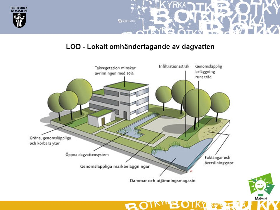 Gröna tak – Sedumtak på förskolan Älvan Takvegetation minskar avrinningen med 50%