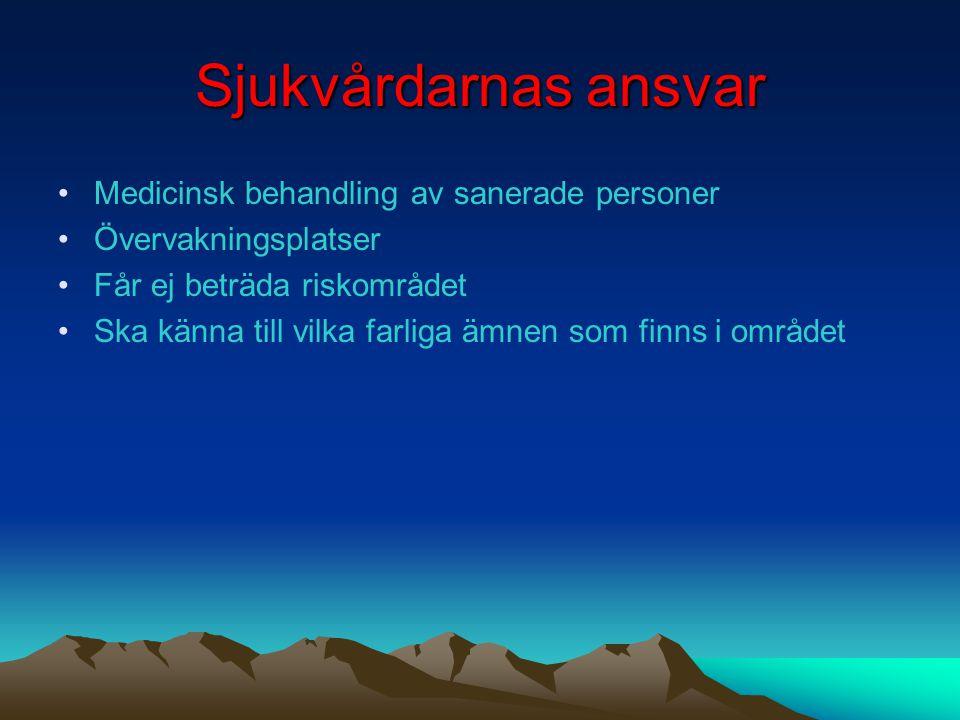 Reklam Storm Ett sanslöst stycke film En av Sveriges mest nyskapande filmer någonsin