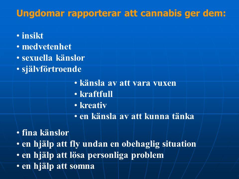 Ungdomar rapporterar att cannabis ger dem: • insikt • medvetenhet • sexuella känslor • självförtroende • känsla av att vara vuxen • kraftfull • kreati
