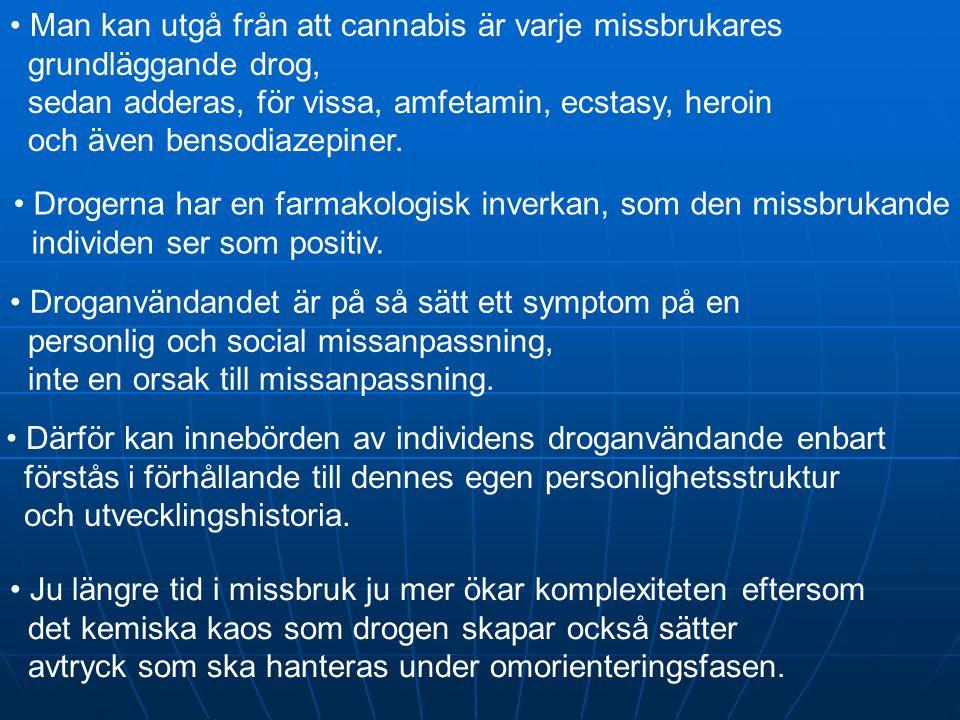 • Därför kan innebörden av individens droganvändande enbart förstås i förhållande till dennes egen personlighetsstruktur och utvecklingshistoria. • Dr