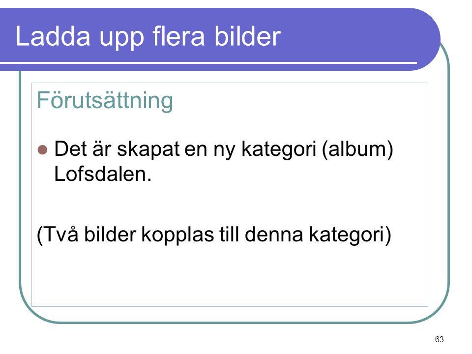 Ladda upp flera bilder Förutsättning  Det är skapat en ny kategori (album) Lofsdalen.