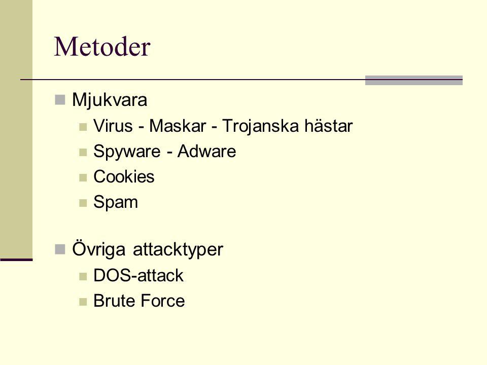 Metoder  Mjukvara  Virus - Maskar - Trojanska hästar  Spyware - Adware  Cookies  Spam  Övriga attacktyper  DOS-attack  Brute Force
